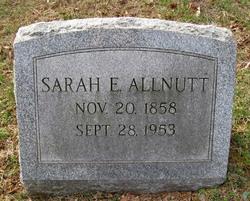 Sarah Elizabeth Allnutt