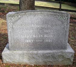 Harry Woodward Blunt, Jr