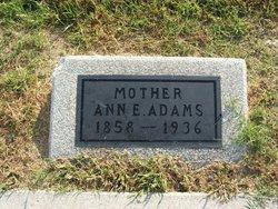 Ann E Adams