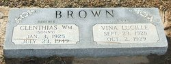 Vina Lucille Brown