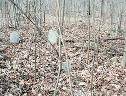 Mullinix Family Cemetery