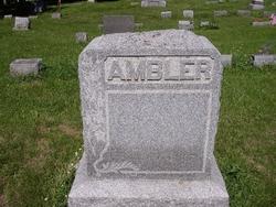 Timothy E Ambler