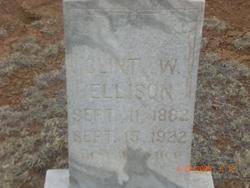 Clint W Ellison