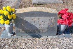 "Mary Elizabeth ""Mollie"" <I>Brooks</I> Adams"