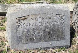 Sarah Elizabeth Lilly