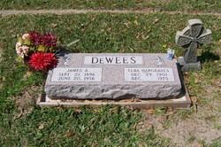 James Alfred DeWees