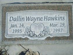 Dallin Wayne Hawkins