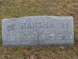 Joel W. Hansma