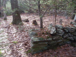 Burgess Cemetery #1