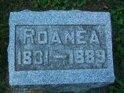 Roanea Winegar