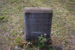 Marie Stephens <I>Case</I> Howland