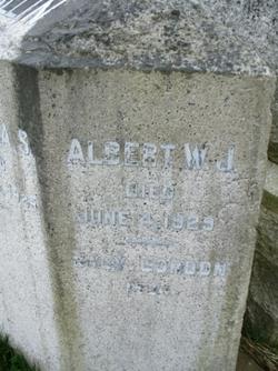 Albert William James Allin
