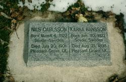 Nils Carlsson