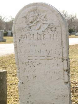 Mellie N. Atkin
