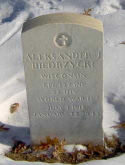 Aleksander J Biedrzycki