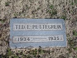 Ted E. Pettegrew