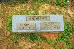 Henry Freeman Andrews