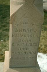 Andrew Halvorsen