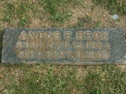 Angus E. Beck