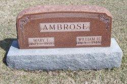 Mary Elizabeth <I>McKinney</I> Ambrose
