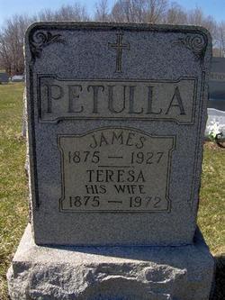 Teresa <I>Luppino</I> Petulla