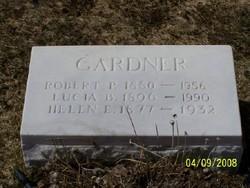 Robert P Gardner