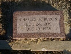 Charles William Burgin