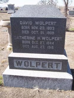 David Wolpert