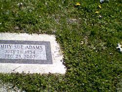 Emily Sue Adams