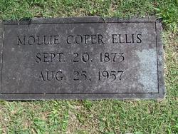 Mary Caroline <I>Cofer</I> Ellis