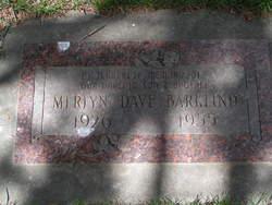 Merlyn Dave Barklind