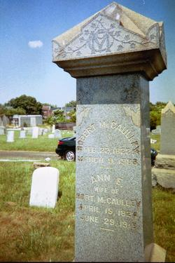 Robert M McCaulley