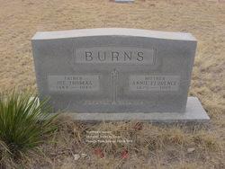 Annie Florence <I>Wallace</I> Burns