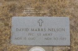 David Marrs Nelson
