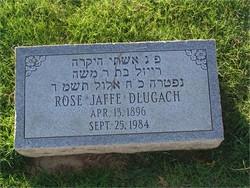 Rose <I>Jaffe</I> Dlugach