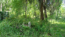 Manning Springs-McDade Cemetery