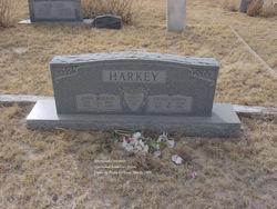 Grace Beulah <I>Burns</I> Harkey