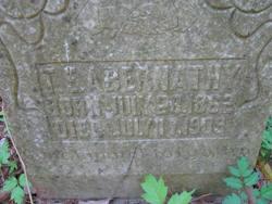 Thomas Everette Abernathy
