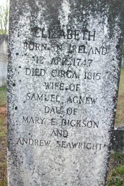 Elizabeth <I>Seawright</I> Agnew