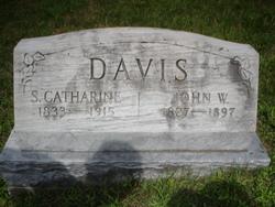 Sarah Catharine <I>Snook</I> Davis