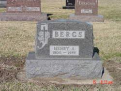 Heinrich Arnold Bergs