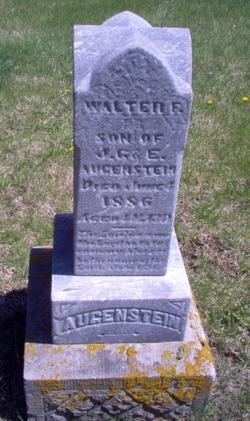 Walter F Augenstein
