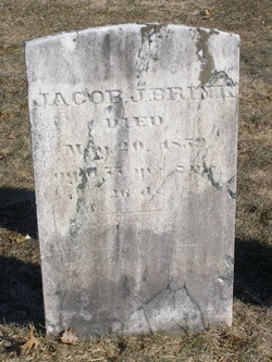 Jacob J Brink