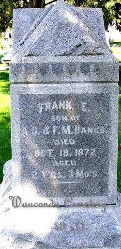 Frank E Bangs