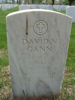 David N Gann