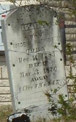 Rosanna <I>Long</I> Misenheimer