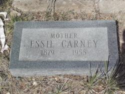Sarah Estianic <I>Green</I> Carney