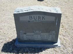 Andrew Burk