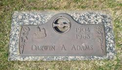 Darwin Allen Adams