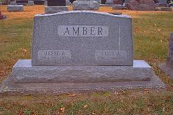 Lucy Anne <I>Brannan</I> Amber